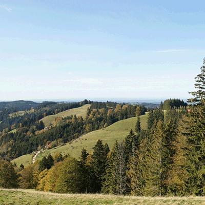 Oberschwäbischer Naturschutztag